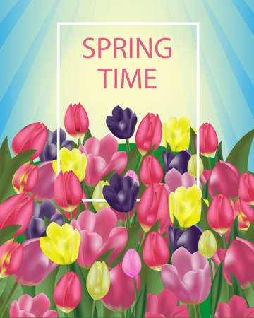 Background spring flowers with colorful tulips and space for message. Vector Illustration.