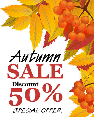 Autumn vertical background with branch of rowan, berries, leaves and sign sale. Frame fall. Vector illustration. Ilustração Vetorial