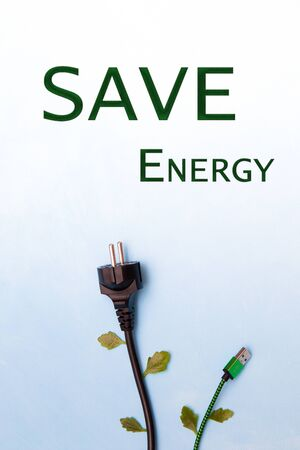 electric plug and green usb cables with leaves on a blue background, top view okpia place, energy conservation concept, plant metaphor, sky and civilization