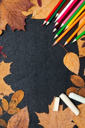 dry autumn yellow leaves, colored carnady and chalk on a black background copy space flat lay top view paint autumn colors autumn red