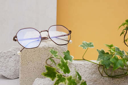 eye glasses on a concrete podium on a beige background, trend composition, stylish eye glasses on a beige background with plants and tiles copy space