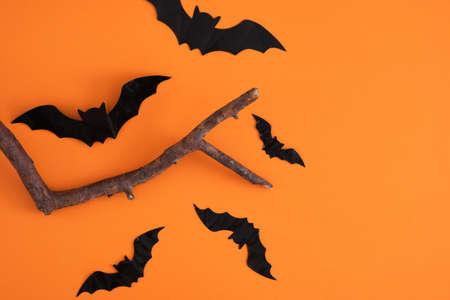 halloween decoration concept branch and decorative black bats on orange background, halloween background