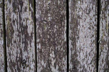 Grunge plank wood texture background close up wall of old boards
