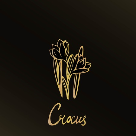 Hand drawn spring flower. It is executed by a gold gradient on a black background. There is a flower name  Stock Illustratie