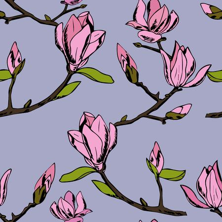 Branche fleurie avec fleurs et boutons. Magnolia parfumé et tendre