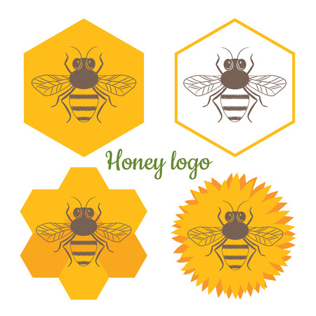 bee on flower: Honey logo vector set. Modern design for your business.