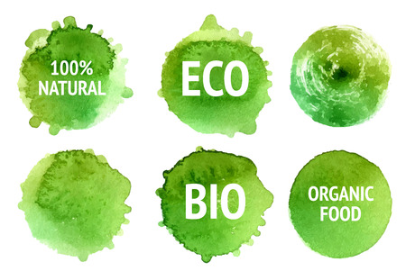 bio food: Vector natural, organic food, bio, eco labels and shapes on white background. Hand drawn stains set.