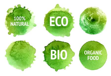 Vector naturales, alimentos, bio, eco etiquetas orgánicas y formas sobre fondo blanco. manchas dibujado mano conjunto.