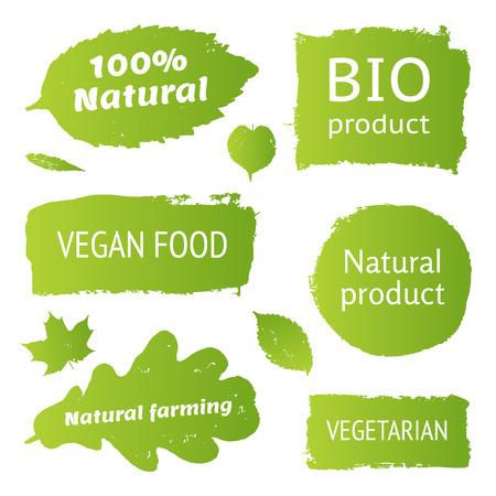Natuurlijk, organisch, biologisch product, veganistisch eten, natuurlijke landbouw, vegeterian labels, vormen. Vector collectie van verf penseel streken op een witte achtergrond. hand getrokken abstract ontwerp elementen instellen. Stock Illustratie