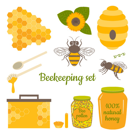 Honey vector set with bee, honeycomb, hive, honey, bee pollen,beeswax candles and sunflower. Beekeeping products.