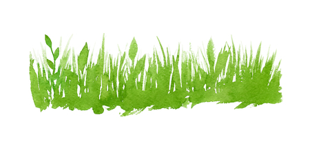 Vector green watercolor natural, organic, bio, eco label and shape, grass on white background. Hand drawn stain. Illustration