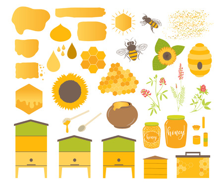 Honey vector set with bee, honeycomb, hive, honey, drip, bee pollen,beeswax candles and sunflower. Beekeeping products. Ilustração