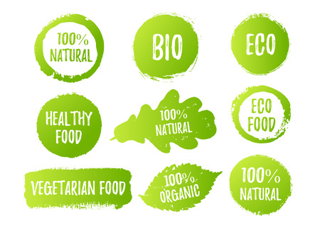 hundred: Vector natural, organic food, bio, eco labels and shapes on white background. Hand drawn stains, leaves set. Illustration