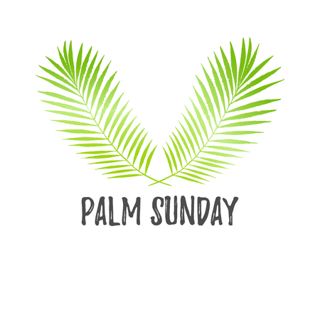 Palm Sunday holiday card, poster with palm leaves. Vector background