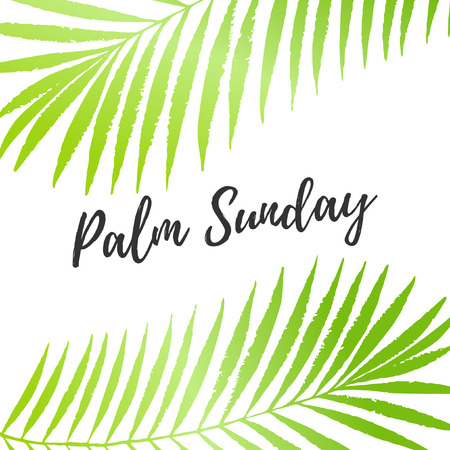 Palm Sunday holiday card, poster with palm leaves border, frame. Vector background Ilustrace