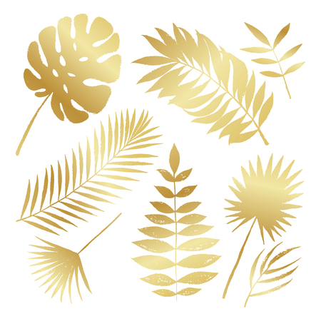 Summer golden silhouette tropical palm tree leaves elements. Vector grunge design for cards, web, backgrounds and natural product. Illustration