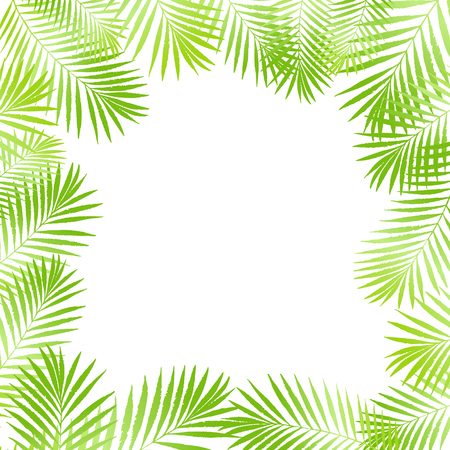 Summer tropical palm tree leaves border, frame background. Vector grunge design for card, poster, wallpaper. Natural tropical palm tree on white.