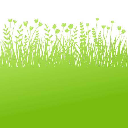 Summer green grass background for text. Vector eco, nature design banner, template. Illustration