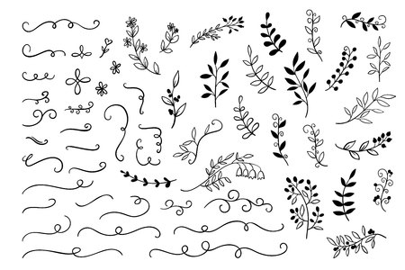 Vector Hand drawn branches, dividers, leaves decoration for wedding, greetings cards. Sketch doodle elements set
