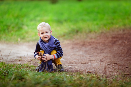 blonde boy: autumn baby boy playing with cones, collect cones on the path in the woods