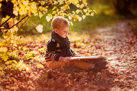 quietly: autumn baby boy consider reading a book under a tree with yellow leaves