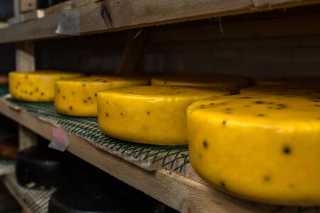 creamery: cheese at the dairy, cheese is ripen on wood racks
