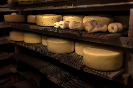 ripening: cheese at the dairy, cheese is ripen on wood racks