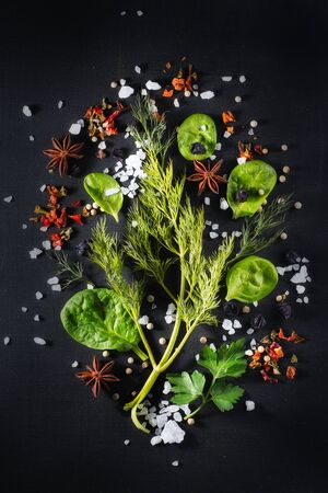 Spinach and greens of dill and parsley, spices and condiments on a black chalkboard, copy space and dark style Stock Photo