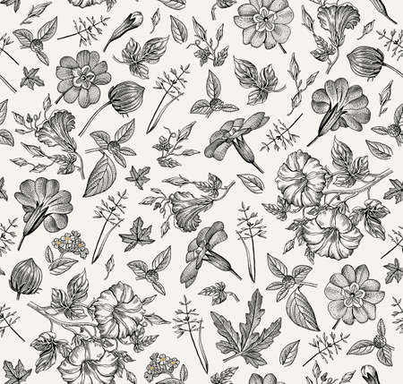 Seamless pattern. Beautiful fabric blooming realistic isolated flowers. Vintage background primrose petunia wildflowers. Wallpaper baroque. Drawing engraving sketch. Vector victorian Illustration.