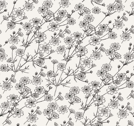 Seamless pattern. Vintage background fabric. Asters Cosmos wildflowers. Wallpaper baroque. Drawing engraving sketch. Vector victorian style illustration.