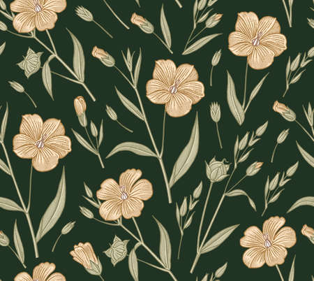 Seamless pattern Set Linum Flax yellow wildflowers Beautiful fabric blooming realistic isolated flowers. Vintage background linear Wallpaper baroque. Drawing engraving Vector victorian illustration
