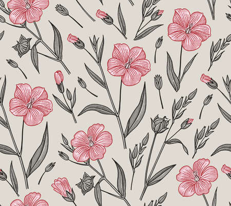 Set Linum Flax pink wildflowers. Beautiful fabric blooming realistic isolated flowers. Vintage background linear. Wallpaper baroque. Drawing engraving. Vector victorian illustration