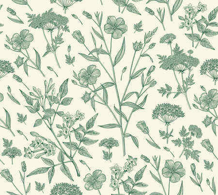Seamless pattern Linum Flax Jasmine Hemlock tree wildflowers. Beautiful fabric blooming realistic isolated flowers Vintage background Wallpaper baroque. Drawing engraving Vector victorian illustration Stock Vector - 160867391
