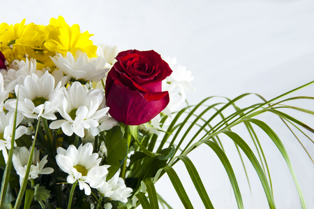 bouquet of flowers. chrysanthemums and roses on a light background