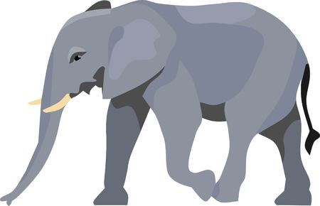 Elephant Animal Vector Illustration