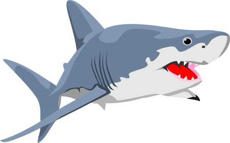 Shark Animal Vector Illustration Иллюстрация