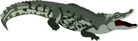 Crocodile Reptile Animal Vector Illustration