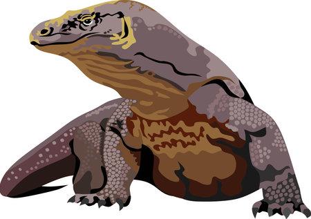 Indonesian Komodo Dragon Reptile Animal Vecteurs