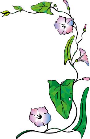 Germ of light purple bindweed Illustration