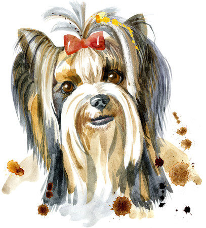 Watercolor Portrait Of Yorkshire Terrier Breed Dog.
