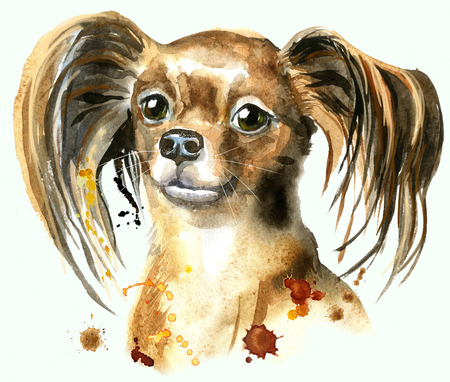 Cute Dog. Dog T-shirt graphics. watercolor toyl terrier illustration