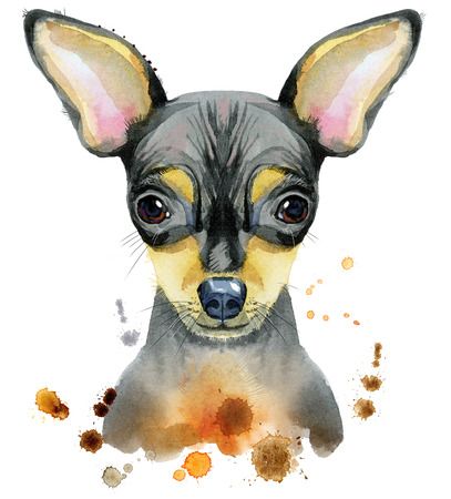 dog grooming: Cute Dog. Dog T-shirt graphics. watercolor toy terrier illustration