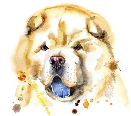 Cute Dog. Dog T-shirt graphics. watercolor chow-chow dog illustration Stock Photo
