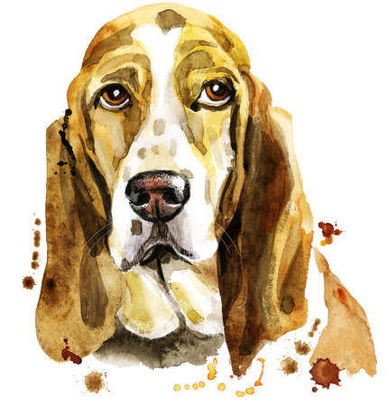Cute Dog. Dog T-shirt graphics. watercolor basset hound Stock Photo