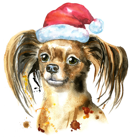 Watercolor portrait of long-haired toy terrier with Santa hat Stock Photo