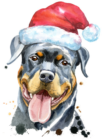 Watercolor portrait of rottweiler with Santa hat