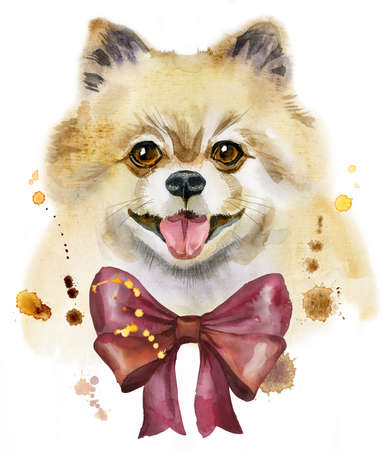 Cute Dog. Dog T-shirt graphics. watercolor pomeranian spitz with bow illustration