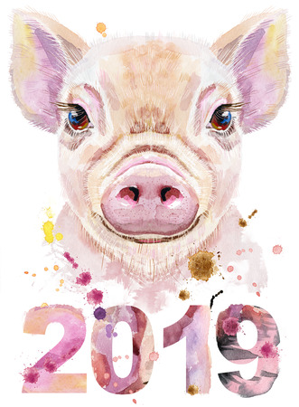 Watercolor portrait of mini pig with year 2019 Stock Photo