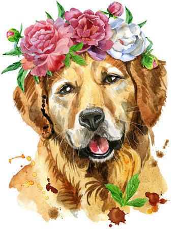 Cute Dog. Dog T-shirt graphics. watercolor golden retriever illustration in a wreath of peonies Stock Photo