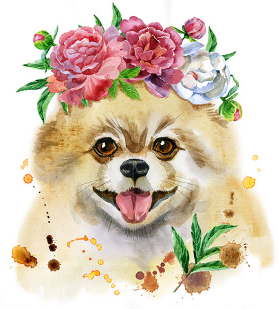 Cute Dog. Dog T-shirt graphics. watercolor pomeranian spitz in a wreath of peonies illustration Foto de archivo
